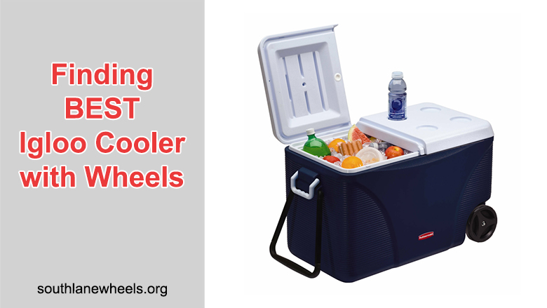 Finding BEST Igloo Cooler With Wheels (With Top 5 Choices)
